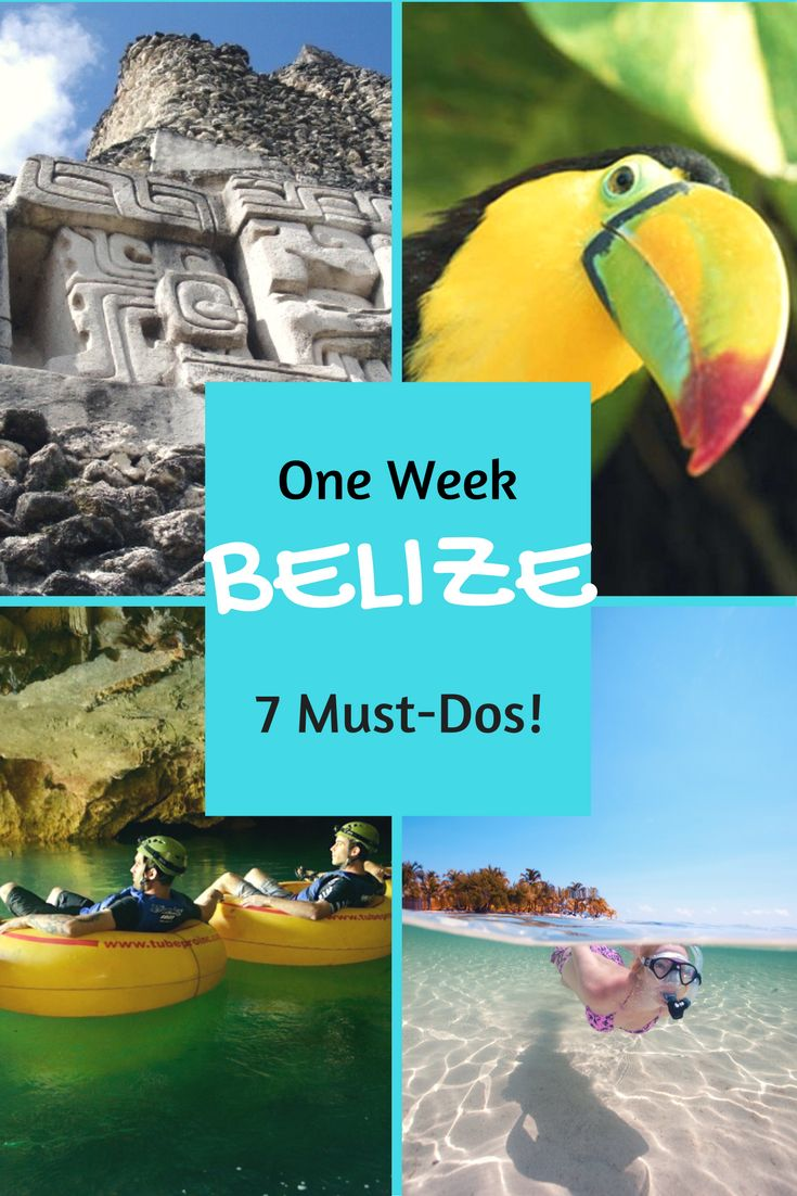 When you only have one week in Belize, here are 7 Must-Do adventures... plus a few extras! http://www.hamanasi.com/belize/belize-one-week-7-must-dos/