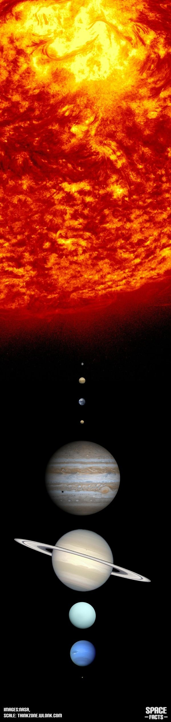 This digram shows off the relative sizes of the major bodies in the solar system and the order of the planets.