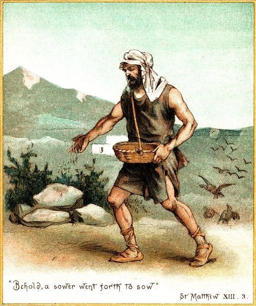 biotech the countercultural origins of an