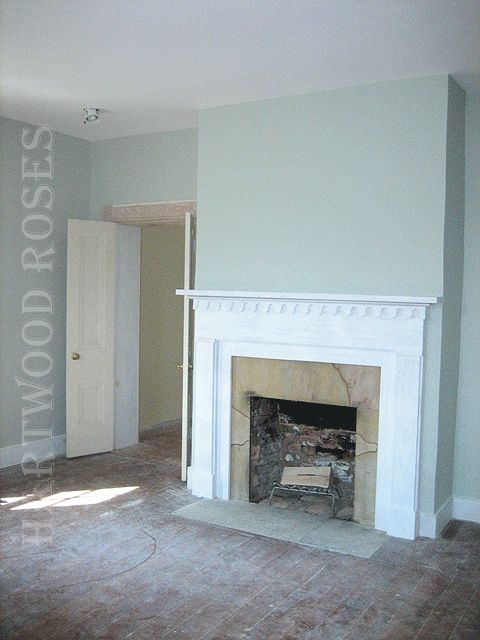 Fresh Light Silver Sage Paint