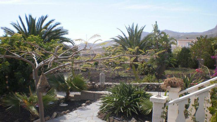 Homestay Santa Cruz de Tenerife, Canary Islands, Spain. Maria Isabel and Jurgen Lutz Rudiger - HomestayIn.com