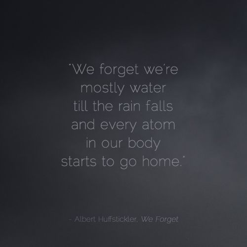 We forget we're mostly water till the rain falls and every atom in our body starts to go home. - Albert Huffstickler, We Forget