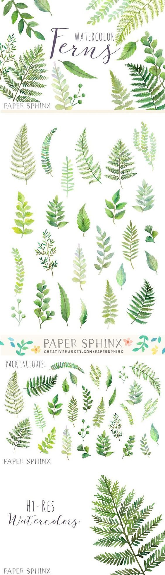 Watercolor fern leaf pack. Wedding templates ….