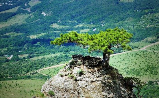 гора «Демерджи»