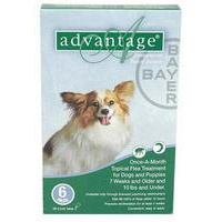 CanadaVetCare provides Frontline Plus Flea & Tick Control for Dogs at best price Online. Order Dog Care Products online. www.canadavetcare.com/advantage-for-dogs/flea-and-tick-control-treatment-24.aspx