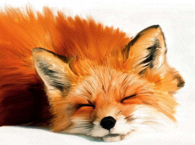 """Sleeping Fox"" Photoshop Painting 