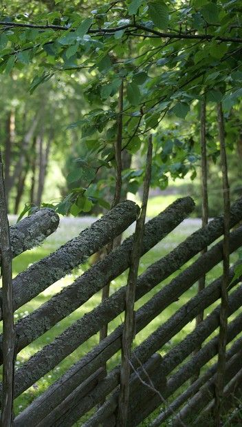 Gärdsgård i Småland, Sweden (fence build in an old way)