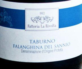 Falanghina del Taburno, La Rivolta – Campania | Novembre 2013