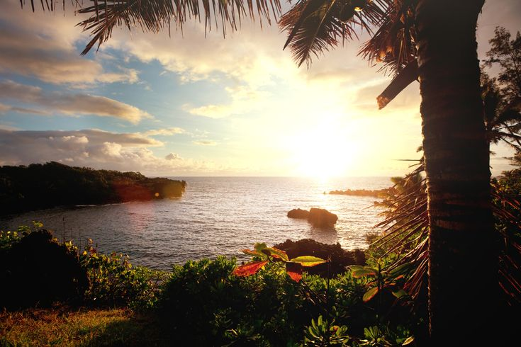 The Best Airlines That Fly to Hawaii   Huffington Post