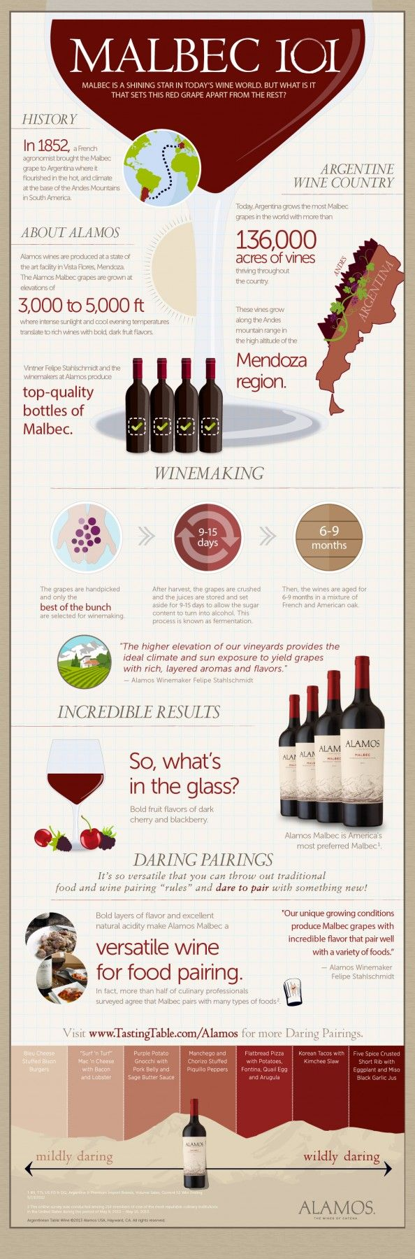 Food and wine pairing with Malbec red wine.
