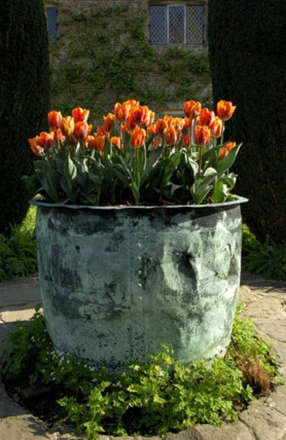 An old copper pot & tulips.