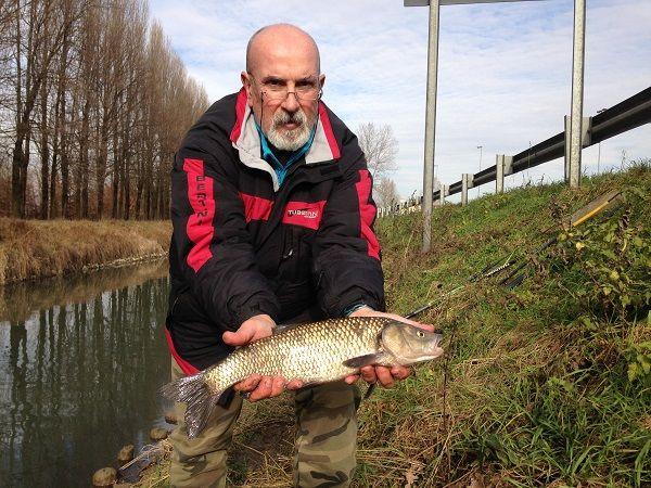 Itinerario veneto di pesca al colpo, in bolognese, sul canale Muson dei Sassi in Veneto a pochi passi da Padova realizzato dalla Pescatori Padovani
