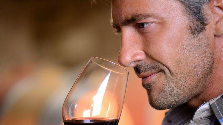El vino ¿engorda o es saludable para la dieta? | Alimentación, Amor, Consumo - Infobae