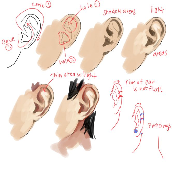 That's rough, buddy., kelpls: UMM PEOPLE ASKED ABOUT NOSES AND EARS SO... via PinCG.com