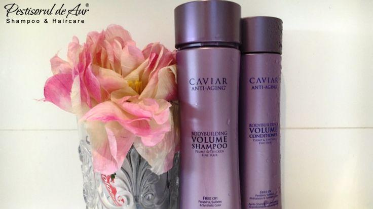 Îţi doreşti un păr plin de volum, hidratat, cu un aspect sănătos şi strălucitor? Alterna Caviar Volume merge dincolo de îngrijirea clasică a părului, îmbunătăţindu-i vizibil aspectul, conferindu-i vitalitate şi regenerându-l în acelaşi timp. În plus, combate factorii care accelerează îmbătrânirea şi intensifică luciul natural. Comandă aici: https://www.pestisoruldeaur.com/Alterna/Caviar-Volume