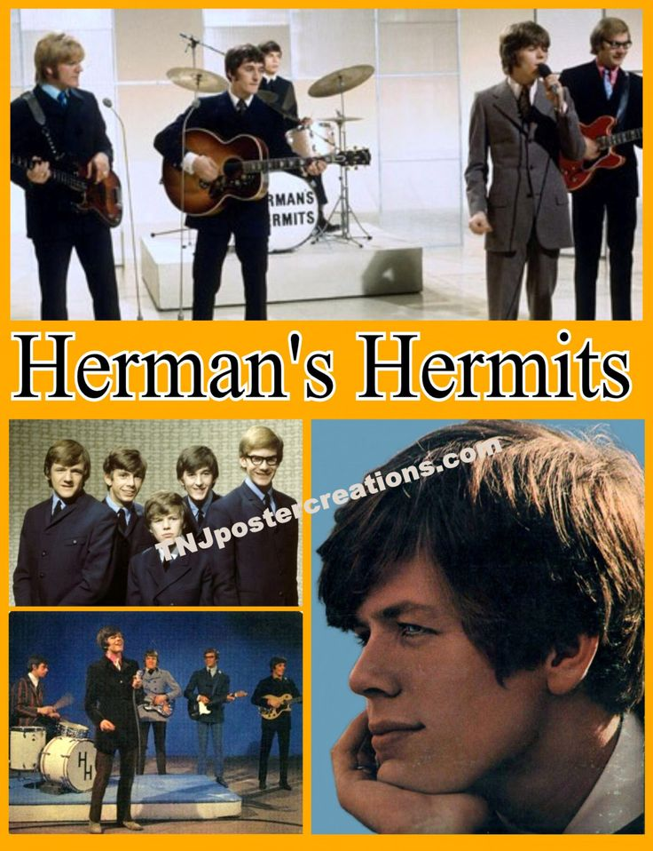 Herman's Hermits 1960's British Invasion Peter Noone by MyGenerationShop on Etsy