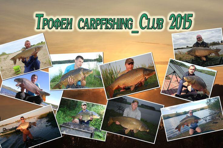 Трофеи сезона Carpfishing_Club 2105