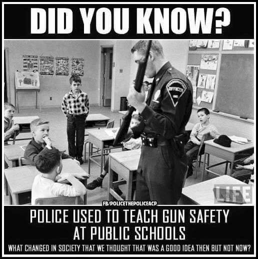 Yes they did. It was a real education. They taught if your parents had guns at home to NEVER touch them, NEVER!!!!