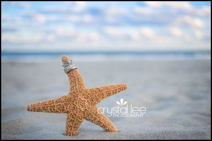 Wedding rings on seastar. Beach wedding. http://crystalleephotography.com