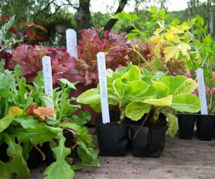 Easy to Make Plant Markers from Mini-Blinds