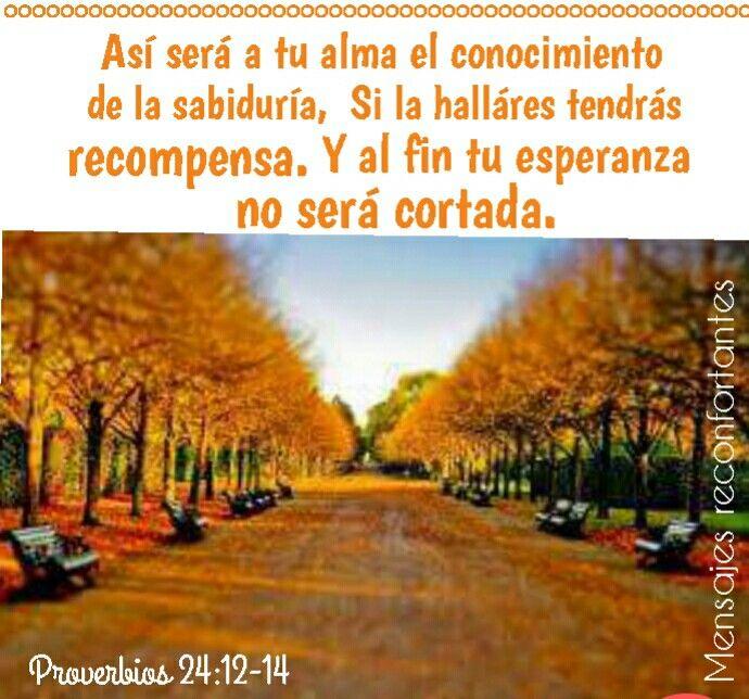12 Porque si dijeres: Ciertamente no lo supimos, ¿Acaso no lo entenderá el que pesa los corazones? El que mira por tu alma, él lo conocerá, Y dará al hombre según sus obras.  13 Come, hijo mío, de la miel, porque es buena, Y el panal es dulce a tu paladar. 14 Así será a tu alma el conocimiento de la sabiduría; Si la hallares tendrás recompensa, Y al fin tu esperanza no será cortada. Proverbios 24:12-14 Toda mi Esperanza está puesta en tí, Mi Amado Señor! 🙏🏼👣🌹