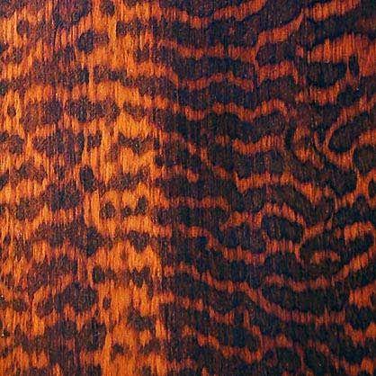Snakewood Veneer Wood Types Pinterest Tortoise