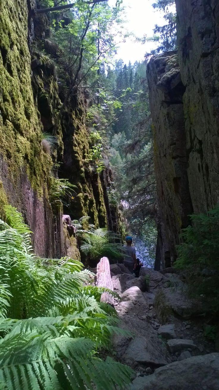 Gorge at Helvetinjärvi.