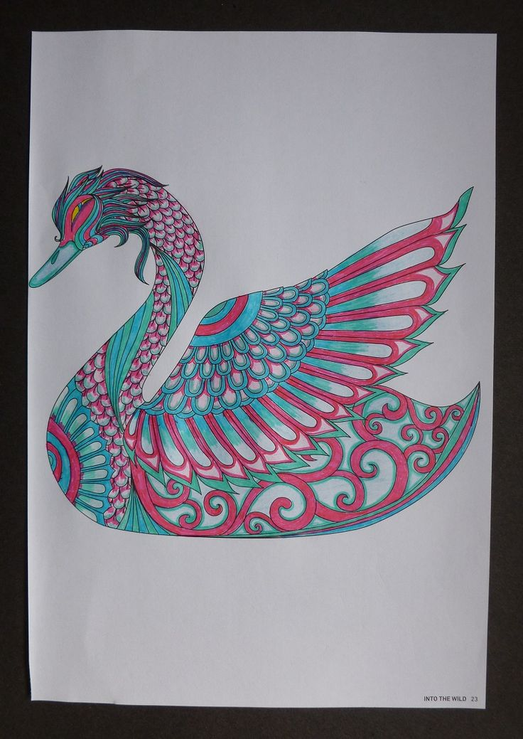 Fantasy Swan taken from ' Into the Wild'  adult colouring book.   Coloured with  fine liner pens.  July 2016.   By Jennifer Johnston.
