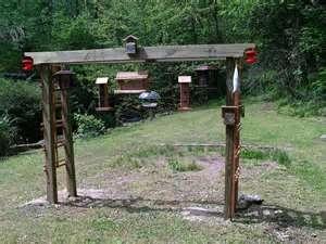 Bird feeding station. Start vines up the sides