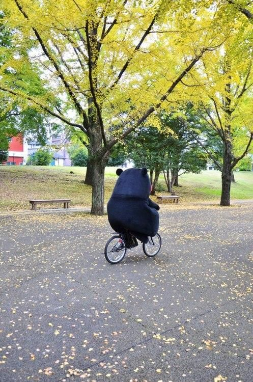 Kumamon's eco-friendly commute #kumamon #bear #bicycle #Kumamoto #Japan