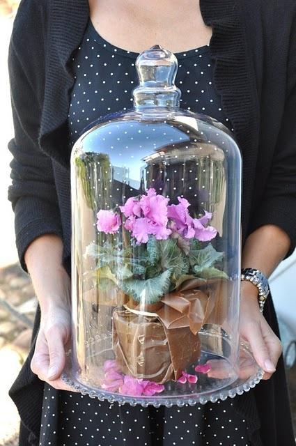 lovely idea
