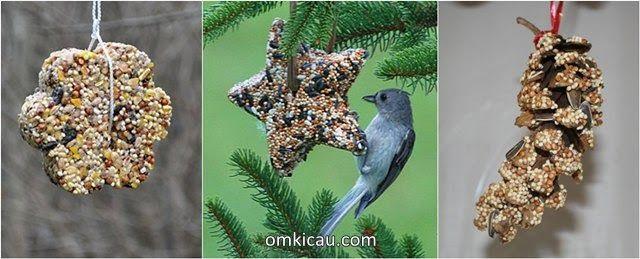 Kreasi Gambar Burung Hantu Dari Biji Bijian Membuat Aneka Olahan Pakan Bijian Untuk Burung Kicauan Anda Download Burung Gambar Burung Gambar Burung Hantu