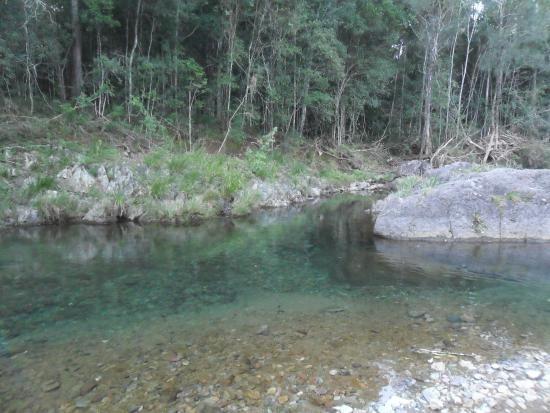 Photo of Conondale National Park