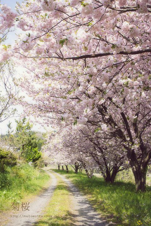 Ishikawa, Japan