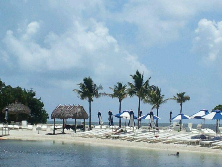 78 Images About Ocean Reef Resort Florida On Pinterest