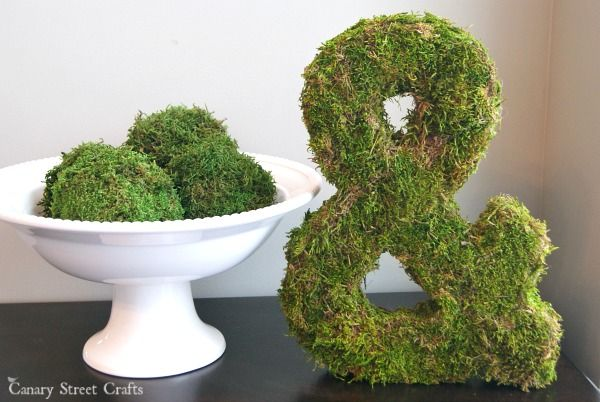Easy projects with moss.  Perfect for creating spring decor and projects! {Canary Street Crafts}
