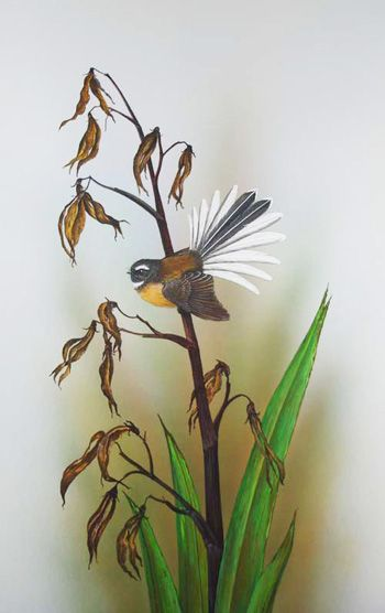 Fantail on spent flax by Janet Marshall gouache.jpg