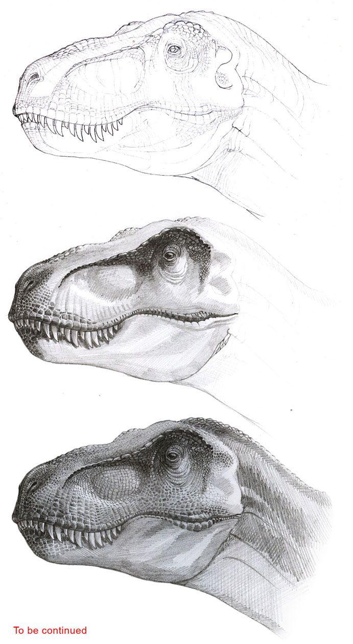 Tyrannosaurus progress, bySergey Krasovskiy/ Finished drawing here