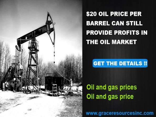 $20 oil price per barrel can still provide profits in the oil market - Services, Legal & Financial, Investments - Richardson, Texas, United States 891335