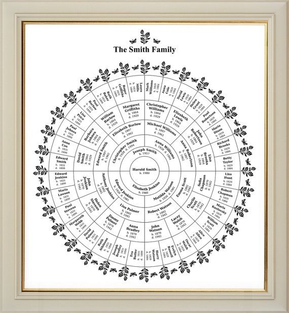 Best 25+ Blank family tree template ideas on Pinterest Blank - blank family tree
