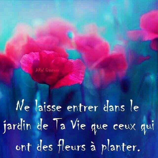 Alexandre Jardin Citation Of Les 25 Meilleures Id Es De La Cat Gorie R Ussir Sa Vie Sur