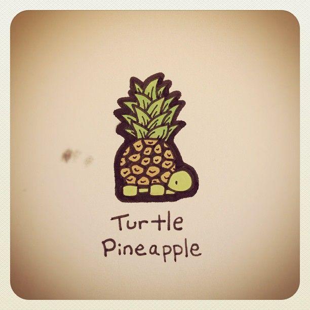 Turtle Pineapple #turtleadayjuly - @Stephie Safford James Couture Portraits Wayne- #webstagram