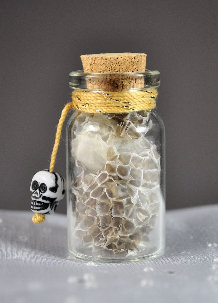 Snakeskin From New Orleans in Decorative Bottle // Voodoo & Magic Supplies // Damballah Charm by PZBART on Etsy https://www.etsy.com/listing/172464921/snakeskin-from-new-orleans-in-decorative