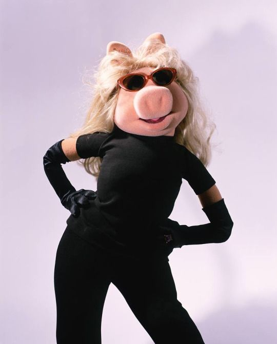 158 Best Images About Kermit Miss Piggy On Pinterest: 132 Best Images About Diva Aka Miss Piggy On Pinterest