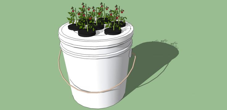 Class: How to Make a 5 Gallon Bucket Aeroponics System Recorded LIVE Who: Dennis McClung When: October 19th, 2013 Where: Honeyville Farms in...