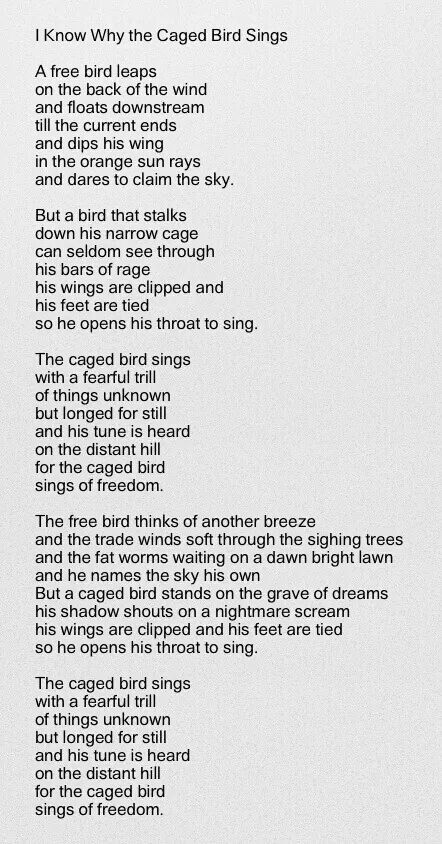 """the caged bird sings of freedom essay For """"i know why the caged bird sings"""" abstract this essay consists of three sections the first section, a brief synopsis of the book """"i know why caged bird sings"""" is presented at the second part, three insights after reading the book are introduced."""