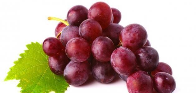 طريقة عمل خل العنب الأحمر Fruit Food And Drink Grapes