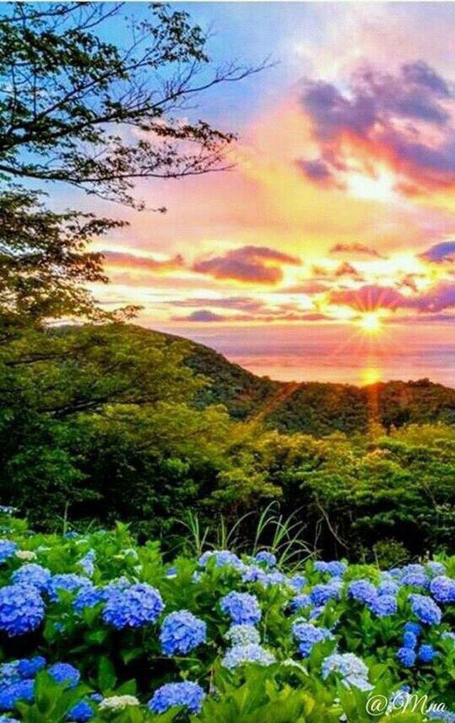 Beautiful Photo Beautiful Nature Beautiful Landscapes Nature Photography