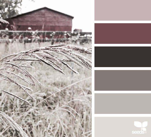 Paleta de color                                                                                                                                                                                 Más
