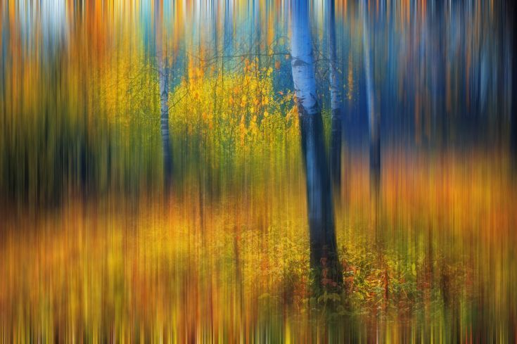 "ARTFINDER: In the Golden Woods. Impressionism (L... by Jenny Rainbow - IN THE GOLDEN WOODS. IMPRESSIONISM by JENNY RAINBOW   The golden autumn in the forest in impressionistic style.   ""The depiction in photography of emotio..."